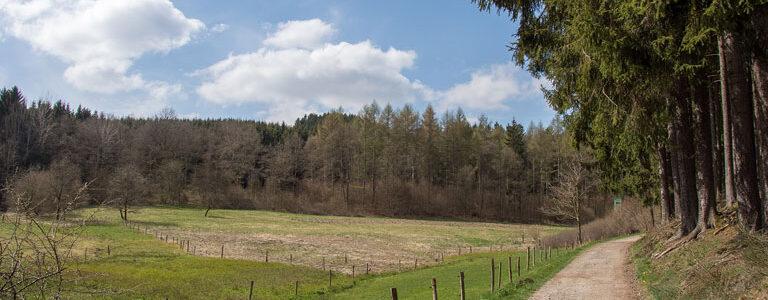 tg-friesen-langenbachtal